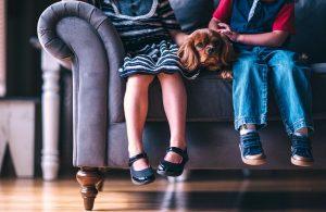 ソファーに座る子供と犬