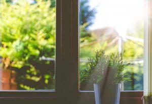 窓から見える緑の景色